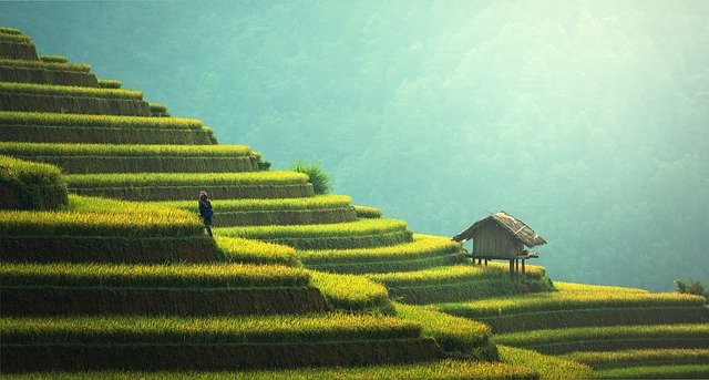 Agriculture on the hills